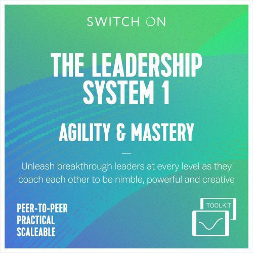 Leadership_System_Peer_Coaching_Toolkit